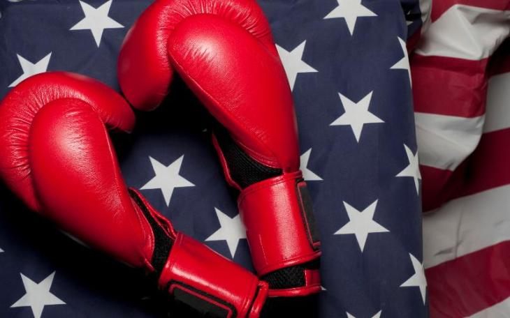 red boxing gloves on flag