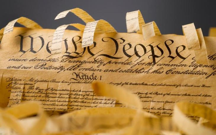 shredded constitution