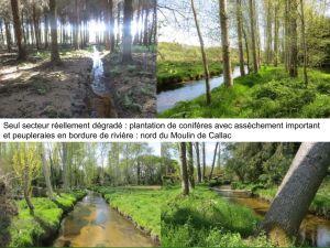 Zones Humides : au nord du Moulin de Callac