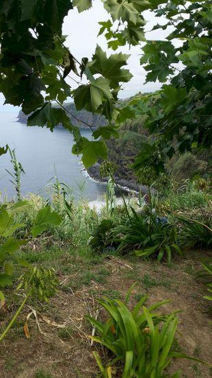 Açores REDUC-20190814_170910