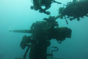 The gun at the front of the HTMS Sattakut wreck