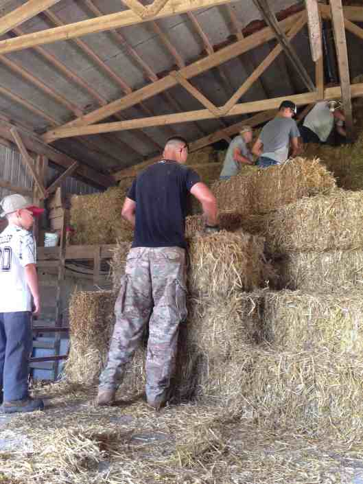 unloading straw in the mow