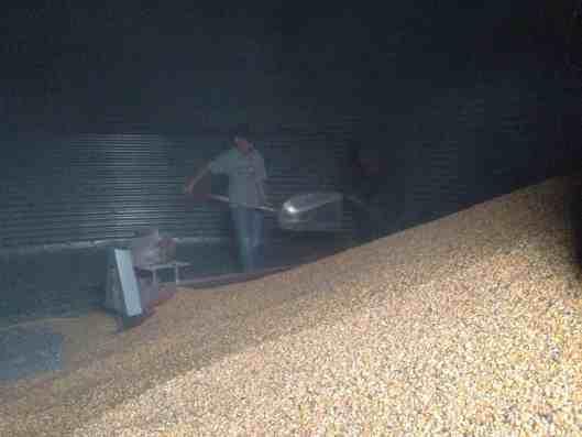 empty grain bin