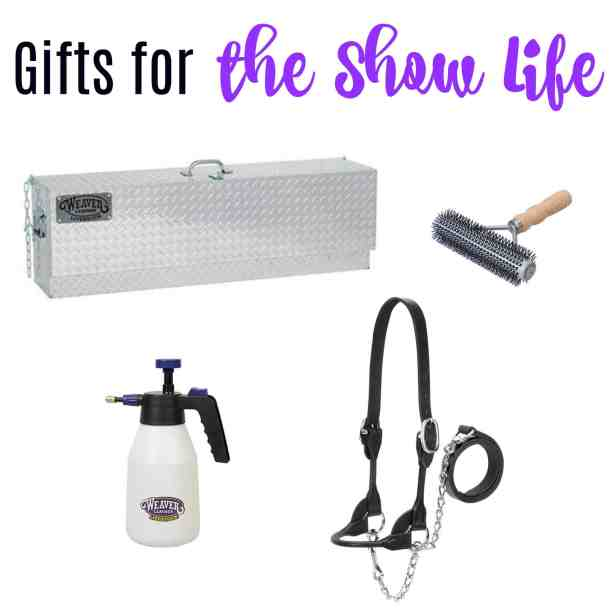 gift ideas for showing cattle or pigs