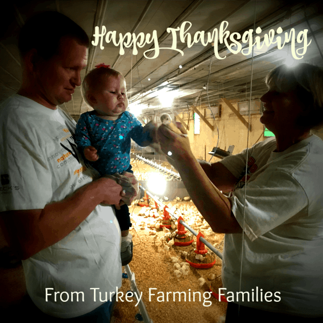 happy thanksgiving from turkey farmers