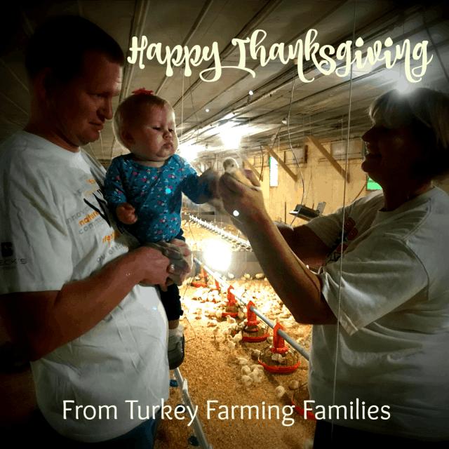 happy thanksgiving from turkey farmers