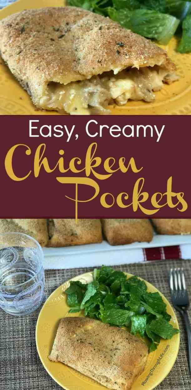 leftover chicken recipe idea