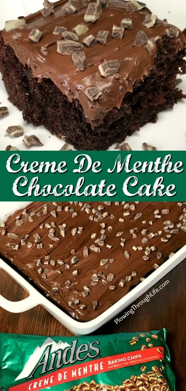 Are you craving a delicious mint and chocolate dessert?  This Crème De Menthe Chocolate Mint Cake is rich and moist, but EASY enough for anyone to make!  Start with a box of cake mix, add a few ingredients and end up with a bakery quality cake.