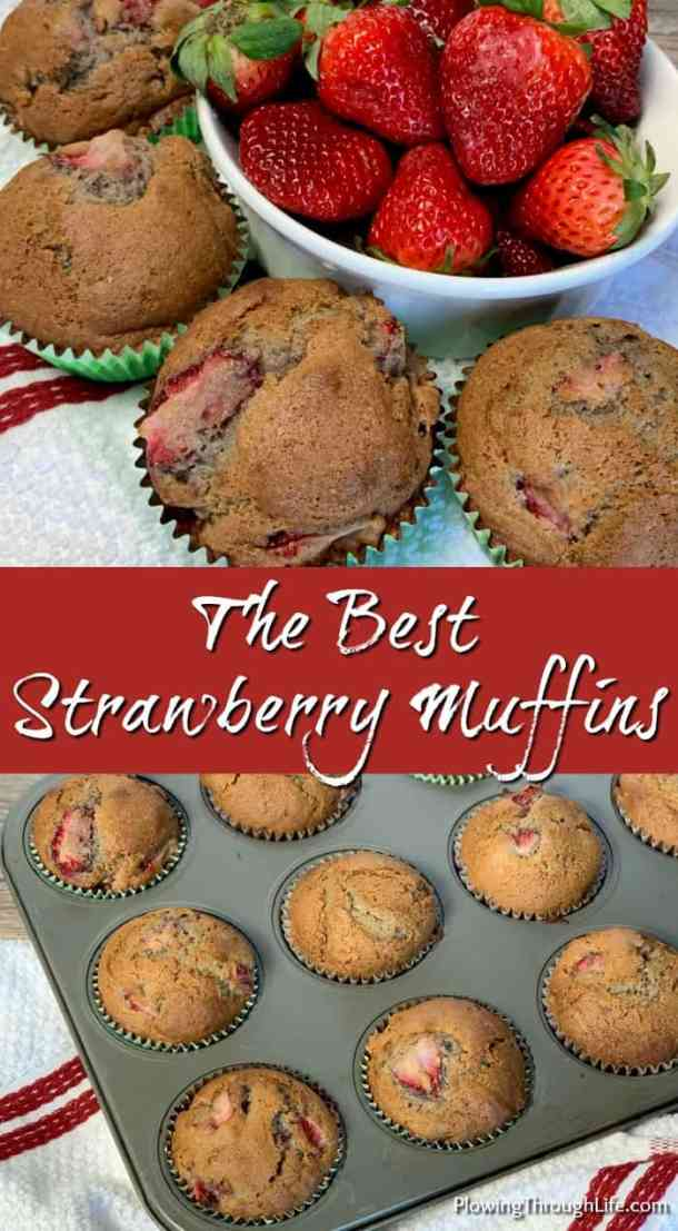A friend shared this recipe for the Best Strawberry Muffins.  These muffins are so easy to make and taste great with fresh picked or store bought strawberries!  This fresh treat is perfect for breakfast or a snack.
