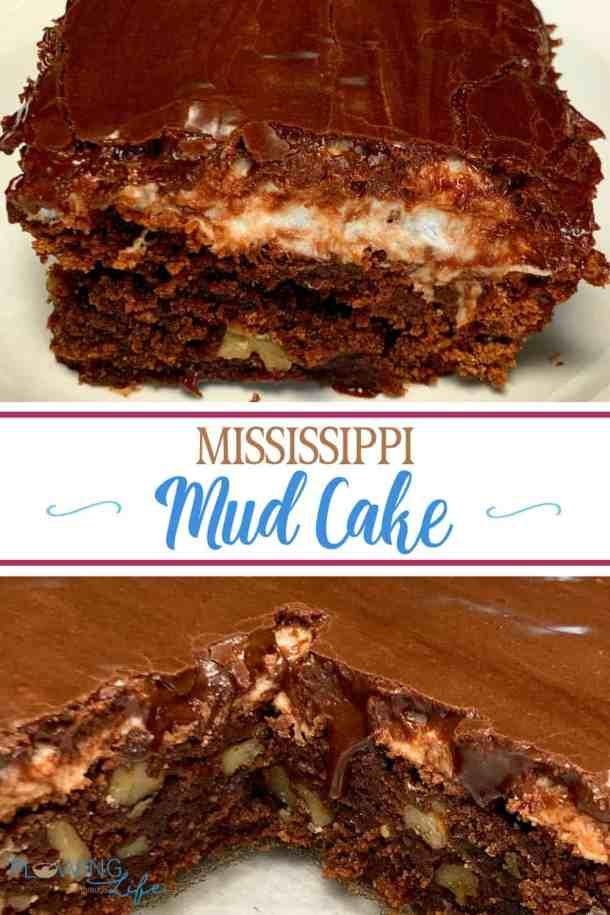 Easy homemade Mississippi Mud Cake