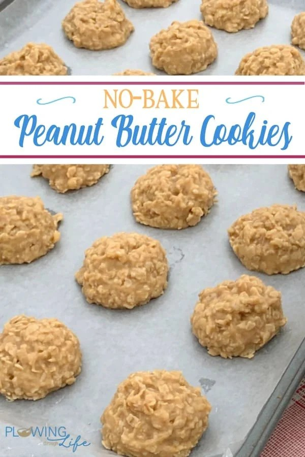 These easy drop cookies are are Best No-Bake Peanut Butter Cookies ever!  These peanut butter cookies are a classic treat that can be mixed up in 15 minutes.