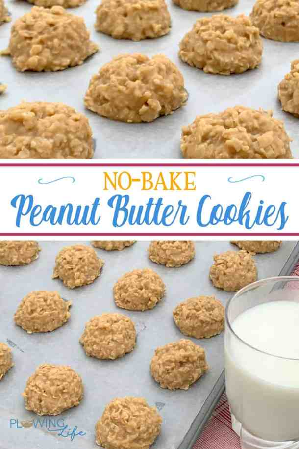 These easy drop cookies are are Best No-Bake Peanut Butter Cookies ever!  Rich and sweet these peanut butter cookies are a classic treat that can be mixed up in 15 minutes.