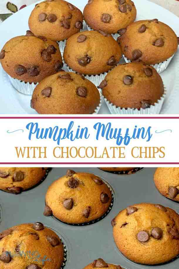 Our entire family LOVES these Pumpkin Chocolate Chip Muffins with Applesauce!  My son makes them himself and eats the chocolate pumpkin treat for breakfast, snacks and dessert.  We've had a family debate about whether they are pumpkin muffins or pumpkin cupcakes.