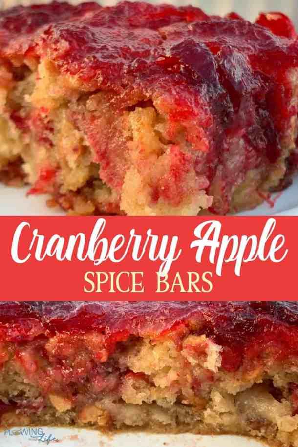 Cran-apple spice bars picture collage