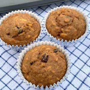 3 oatmeal raisin all bran muffins on a blue plaid cloth