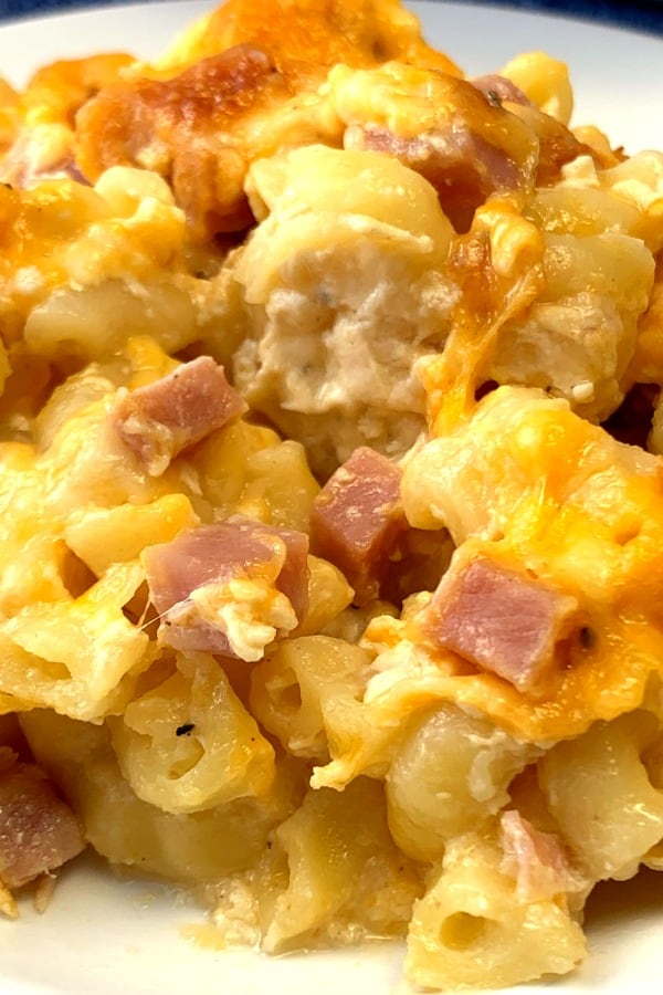 Close up plate of macaroni and cheese with ham