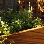Garden Retaining Wall