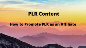 How to Promote PLR as an Affiliate