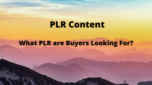 What PLR are Buyers Looking For?