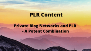 Private Blog Networks and PLR - A Potent Combination