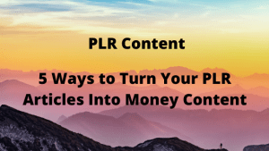 5 Ways to Turn Your PLR Articles Into Money Content