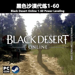 【美服/欧服】黑色沙漠代练1-60