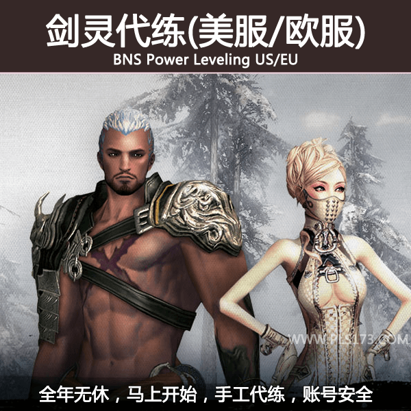bns-power-leveling