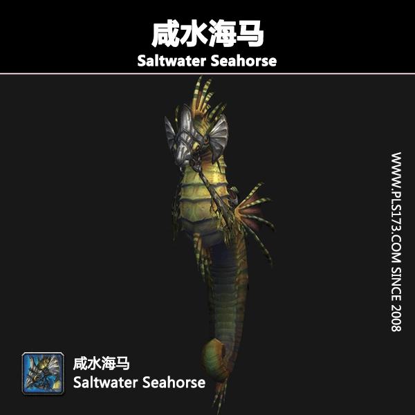 Saltwater Seahorse咸水海马