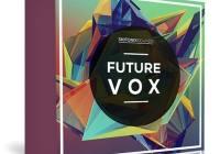 Skifonix Sounds - Future Vox WAV MIDI SERUM