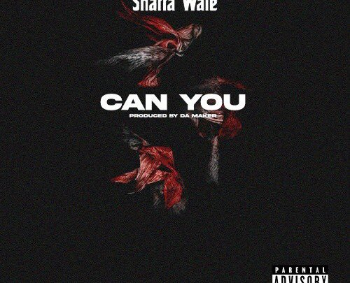 Shatta Wale Can You song mp3 download