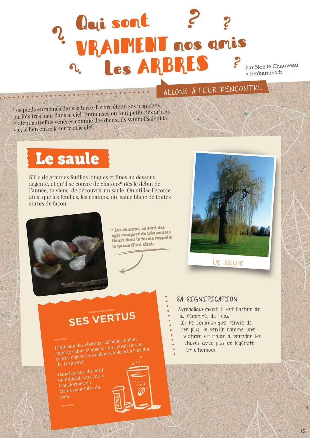 LES PRÉCÉDENTES ÉDITIONS Plum magazine 1