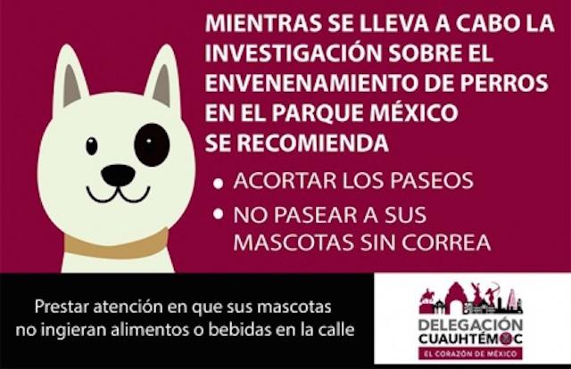 Cuida a tu perro si vives en la Condesa o en los alrededores