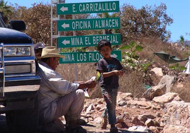 Carrizalillo