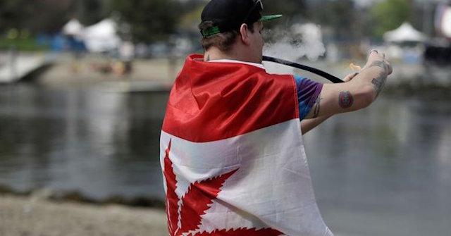 Uso recreativo de marihuana en Canadá provocará desabasto