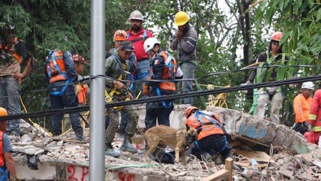 multifamiliar tlalpan, labores rescate, sismo, búsqueda, edificio derrumbado