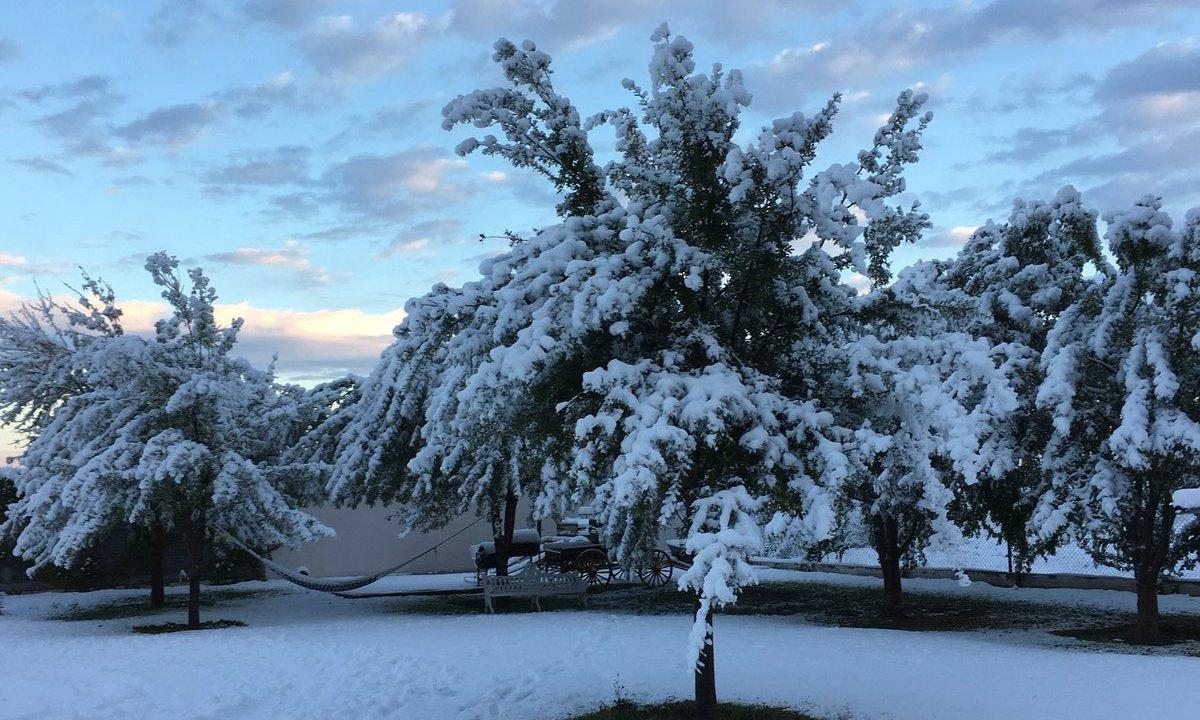 cae nieve en los estados de coahuila, Chihuahua y durango