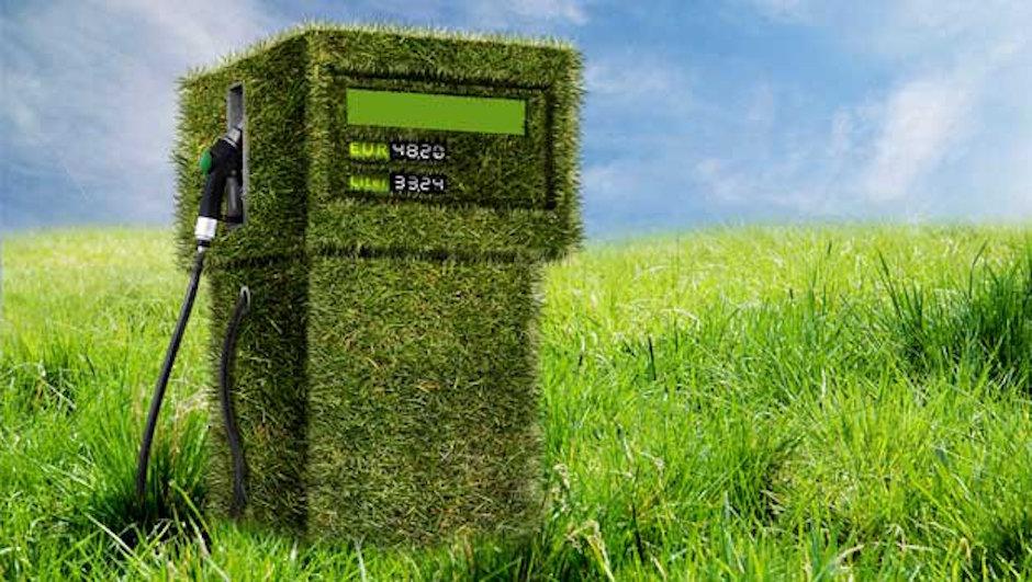 biocombustibles riesgo sustentabilidad alimentaria FAO