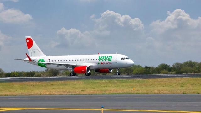VivaAerobús pierde gatito en aeropuerto de CDMX