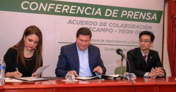 Grupo Yeon Zacatecas