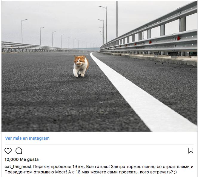 Móstik Gato Rusia Putin Puente Crimea