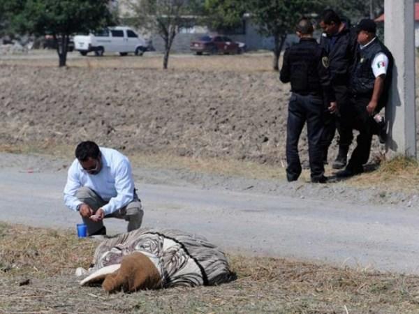Hallan a dos ejecutados en Iztapalapa, van 9 en 8 días en la delegación