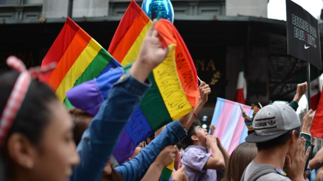 Senado, LGBT, IMSS