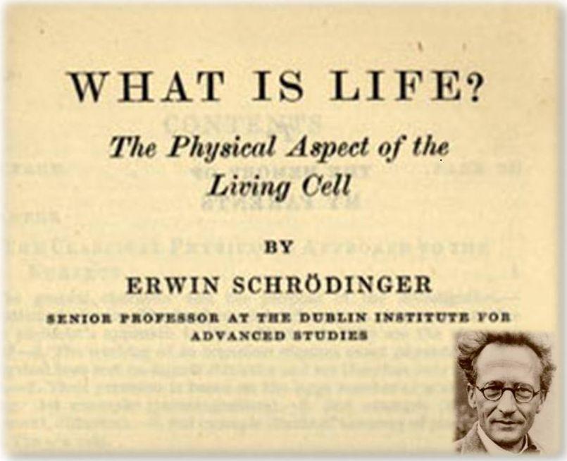 Primera edición de ¿Qué es la vida?, libro de Erwin Schrödinger