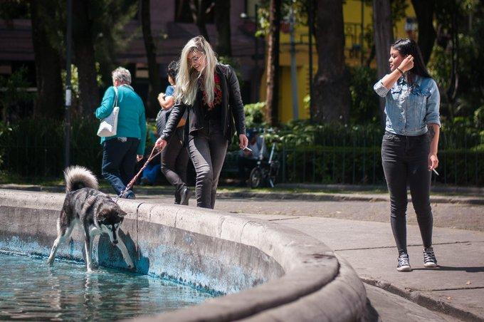 Delincuente se pasea impunemente en espacios públicos