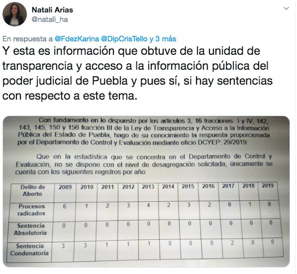 aborto_puebla_diputada_marea_verde