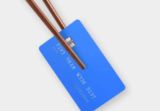 Humanos consumen el plástico equivalente a una tarjeta de crédito