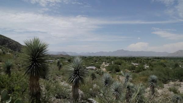 Desierto de Durango, el lugar de nacimiento del canto cardenche