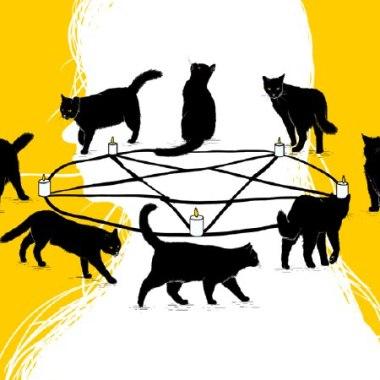 Relación entre gatos y mujeres
