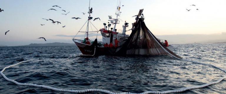 Baja California depende de la pesca