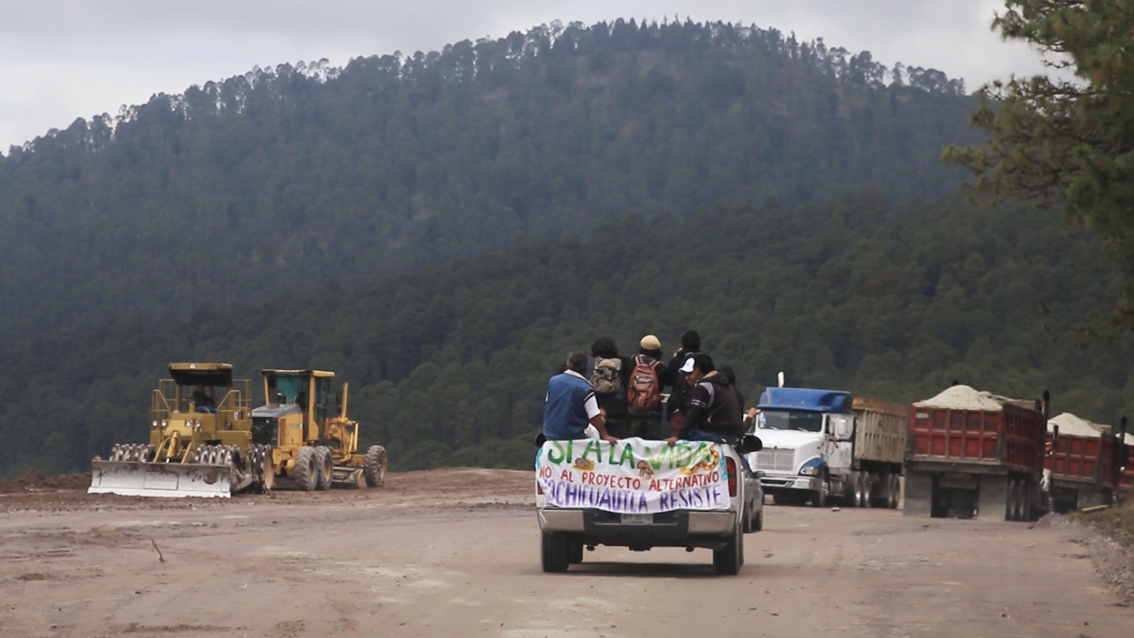 Activistas contra la tala del bosque se oponen a construcción de autopista